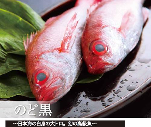 日本海の白身の大トロ:幻の高級魚のどぐろ